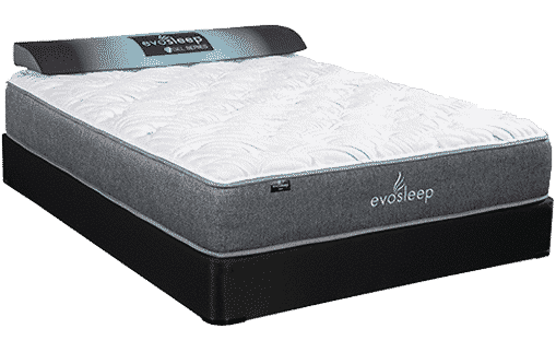 Evo Quilted - Virtue Evo Quilted